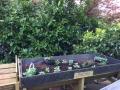 GardenW640