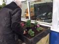 PlantsW640
