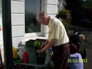 Hawthorn Court Planting Flowers